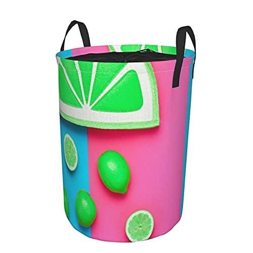 Storage Basket,Lemon Citrus Fruit Fashion Summer Hipster Accessories Set,Collapsible Large Laundry Hamper with Handles 21.6'X16.5'
