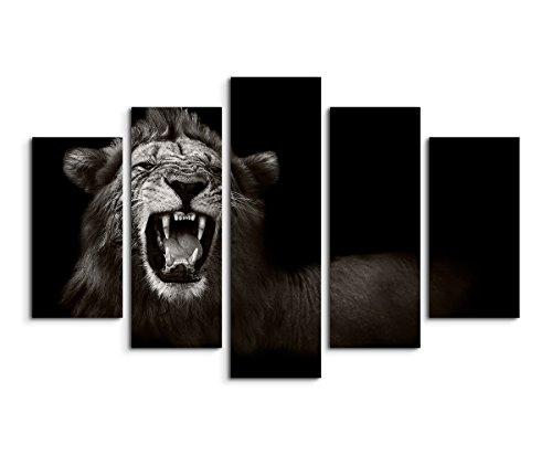 Sinus Art Wandbild 5 teilig gesamt 150x100cm Tierfotografie – Brüllender afrikanischer Löwe schwarz weiß