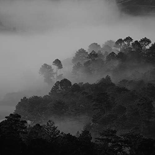 Piano Suave Relajante, Sonidos de lluvia para dormir & Academia de Meditação Buddha