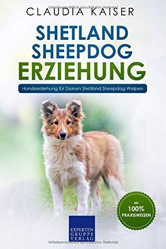 Shetland Sheepdog Erziehung: Hundeerziehung für Deinen Shetland Sheepdog Welpen