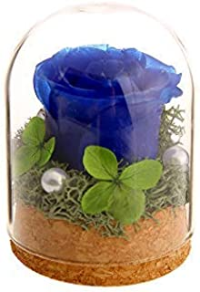 VINTAGE EMBROIDERY V.E. Preserved Rose Never Withered Roses Flower in Glass Dome, Gift for Valentine's Day Anniversary Birthday (Blue)…