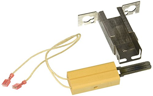 Pentair 471696 Igniter and Bracket Replacement MiniMax NT LN Pool/Spa Heater