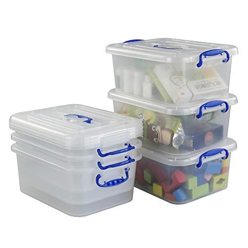 Hokky 9 L Cajas de Almacenamiento 6 Unidades, Caja Transparente con Tapa, Plástico Contenedor