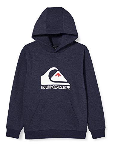 Quiksilver Big Logo -...