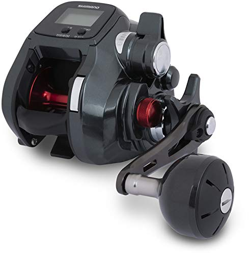 Japan-Shimano Moulinet Electrique Reel Plays 600-475g - R.5.5:1 - RETR.59cm - BK.11Kg - PLAYS600