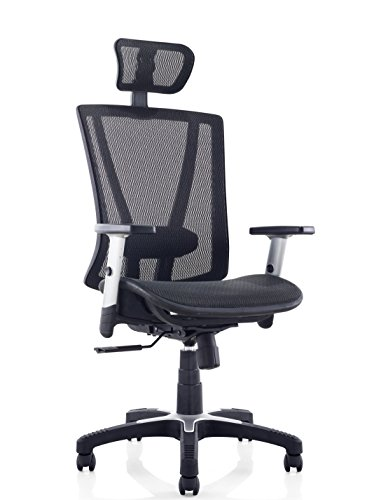 Ergomax MSH112BK Ergonomic Height Adjustable Home Office All Mesh Desk, Lumbar Support & Back Relief Breathable Chair, 53 Inch Max, Black