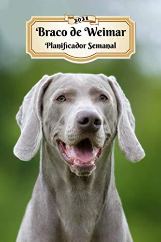 2021 Braco de Weimar Planificador Semanal: 107 Páginas | Tamaño A5 | Calendario | 12 Meses | 1 Semana en 2 Páginas | Agenda Semana Vista | Tapa Blanda | Perro