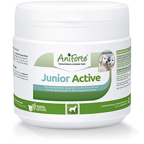 AniForte Junior Active für Welpen und Junge Hunde 250g - Für Knochen, Sehnen, Bänder, Zahn Entwicklung von Welpen & Junghunden. Puppy Ergänzung mit Kalzium, Vitaminen und Mineralien