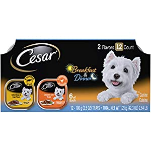 CESAR Soft Wet Dog Food Classic Loaf in Sauce Breakfast and Dinner Mealtime Variety Pack, (12) 3.5 oz. Easy Peel Trays