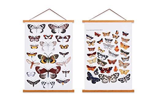 Sanauto Listones para póster magnéticos de madera, para colgar cuadros, 50 x 70, 50 x 100, 50 x 75 (50 cm, teca, 2 paquetes)