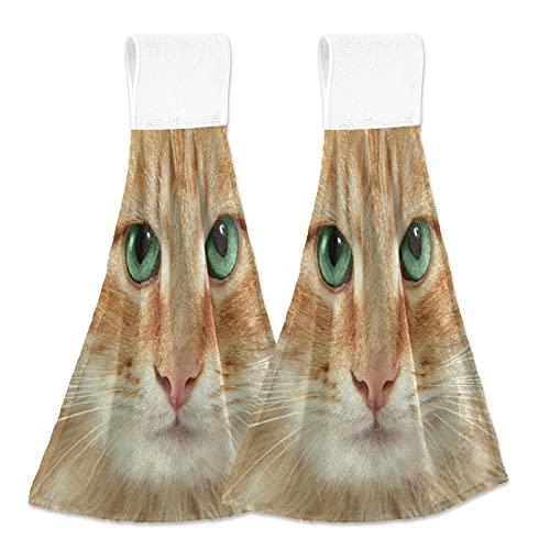 Oarencol Toalla de mano de cocina con ojo verde de gato, absorbente, para colgar con lazo para baño, 2 unidades