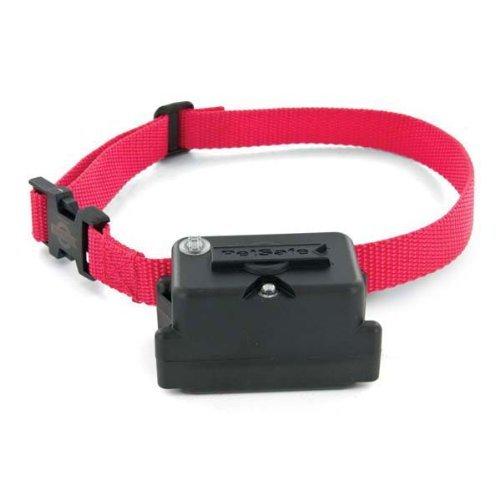 2: PetSafe Stubborn Dog Collar with 2 Free Batteries