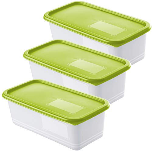 Rotho Domino 3er Set Gefrierdosen 1.2l mit Deckel, Kunststoff (PP) BPA-frei, grün/transparent, 3 x 1,2l (23,3 x 11,8 x 11,6 cm)