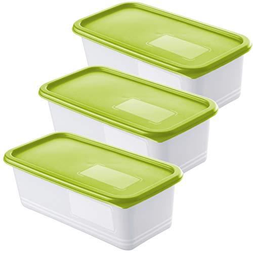 Rotho Domino 3er Set Gefrierdosen 1.2l mit Deckel, Kunststoff (PP) BPA-frei, grün/transparent, 3 x 1,2l (23,3 x 11,8 x 7,5 cm)