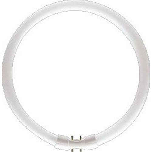 Philips Leuchtstofflampe TL5-C 840 coolwhite 2GX13 Circular Pro 40W
