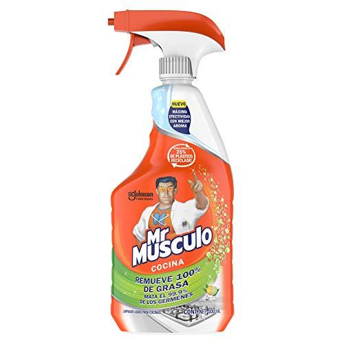 mister musculo windex fabricante Mr Musculo