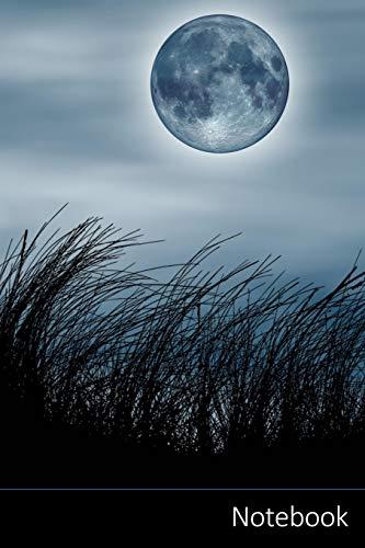 Notebook: Fantasía, Luna Llena, Medio Ambiente, Naturaleza Cuaderno / Diario / Libro de escritura / Notas - 6 x 9 pulgadas (15.24 x 22.86 cm), 150 páginas, superficie brillante