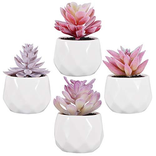 Zalava 4 Stück Künstliche Sukkulenten Pflanzen Kunstpflanze Künstliche Pflanzen mit Topf für Tisch Haus Balkon Büro Deko (Lilarosa)