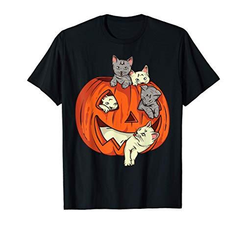 Cats Pumpkin Carved Jack O Lantern Cat Halloween Costume T-Shirt