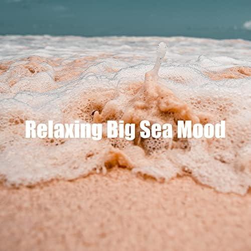 Ocean Sounds ACE