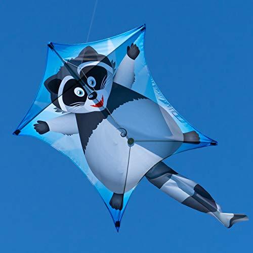 CIM Drachen – Penta Waschbär – Abmessung: 167cm x 102cm - Einleiner Flugdrachen für Kinder ab 6 Jahren - inkl. 80m Drachenschnur und Streifenschwänze