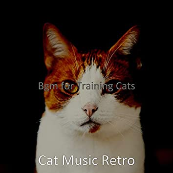Bgm for Training Cats