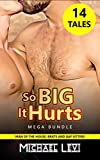 So BIG It Hurts MEGA Bundle: 14 Stories of Man of the House, Brats and Gay Sitters