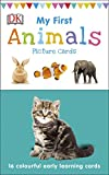 My First Animals Picture Cards: 16 colourful early learning cards (My First Touch and Feel Picture Cards)