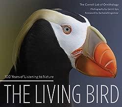 Best the living bird Reviews