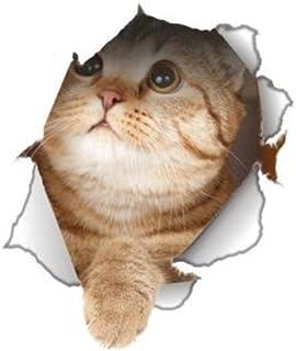 Winston & Bear - Pegatinas de Gato en 3D para Pared, Nevera, Inodoro y más, Paquete al por Menor