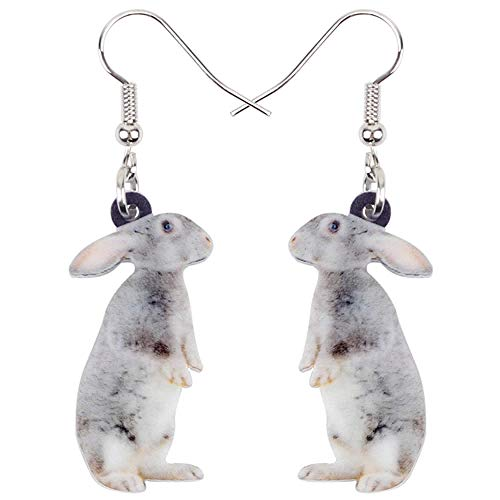 N\A Pendientes de Conejo de Conejito Gris de pie Dulce acrílico, Pendientes Largos Colgantes, Animales jóvenes para niñas