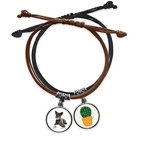 Pulsera de fotos de animales para perros y mascotas con cadena de mano, pulsera de cactus de cuero