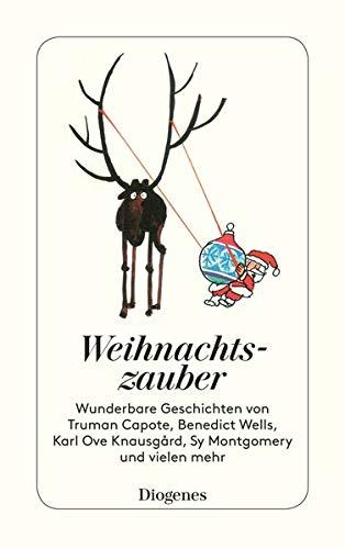 Weihnachtszauber: Wunderbare Geschichten für gemütliche Tage (detebe)
