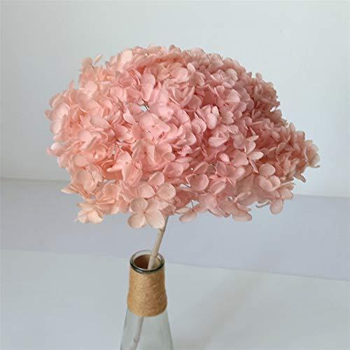 JSJJAES Flores Artificiales Flores secas preservadas Ramo de hortensias, hortensias secas Naturales en Tallos, 4 Colores Disponibles (Color : Pink)