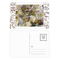 8月のロータスxjj油絵 公式ポストカードセットサンクスカード郵送側20個