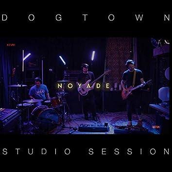 Dogtown Studio Session