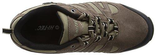 Hi-Tec Men's Alto Ii Wp Low Rise Hiking Boots