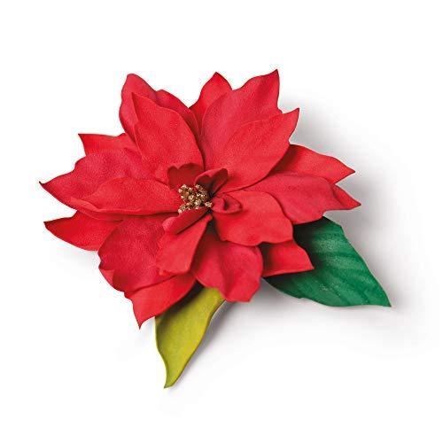 Sizzix Die 5PK Poinsettia Set di Fustelle Thinlits 5 pz 664817 by Jennifer Ogborn, Elegante Stella di Natale, Taglia unica