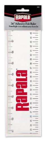 Top fish tape measure sticker for boat for 2020