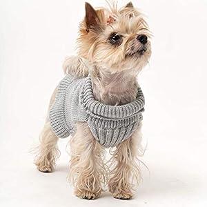 Gestrickter Hundepullover aus Schurwolle | Hundepulli | Hundemantel | Tierjacken und Pullover | Model MIA | Dackel Pulli…