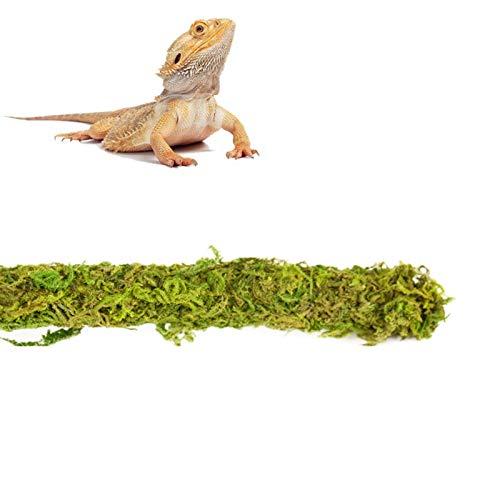 Climbing Pet Shelters, Climbing Trees, Vines, Turtles, Terraces, Lizard Terrariums, Moss Landscaping Supplies, To Create Natural Habitat,A