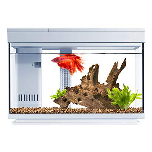 XLSQW Fish Tank Glas Klein voll gekapselt Smart-Aquarium Goldfish Bowl Eco-Zylinder-Noten-Schalter Desktop Home-Dekor, mit Wasserpumpe Lampe Filter, für Home Office