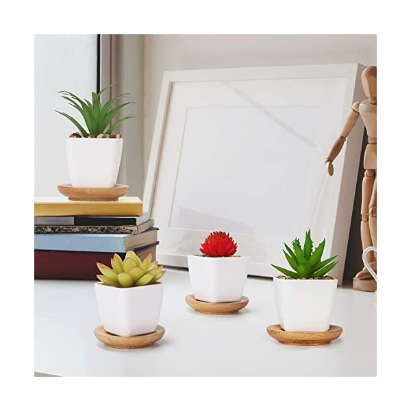 TJ.MOREE Plantas artificiales Pequeñas Bonito y Suculento Verde, con Bandeja de Bambú, Perfectas para la Sala de Estar…