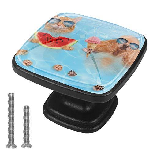 Manopole quadrate per armadietti, maniglie e tiranti, per mobili, per armadi, credenze, cassetti, due cani da nuoto