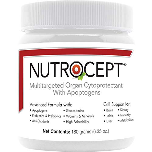 NutroCept Adult Dog Supplement + Organ Cytoprotectant + Supports The Brain, Joints, Kidneys and Liver + Promotes Energy and Vitality