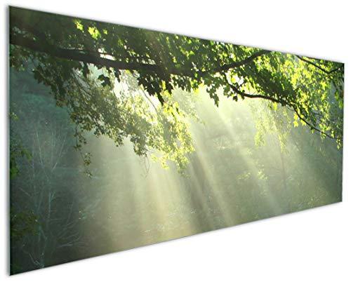 Wallario Küchen-Rückwand | Glas mit Motiv Sonnenstrahlen im Wald in Premium-Qualität: Brillante Farben, ohne Aufhängung | abwischbar | pflegeleicht