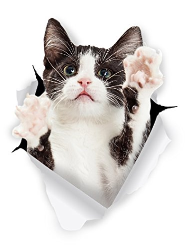 Winston & Bear Pegatinas de Gato 3D – Paquete con 2- Vinilos al por menor de gato bicolor blanco y negro para la pared – refrigerador – tocador – cuarto – auto.