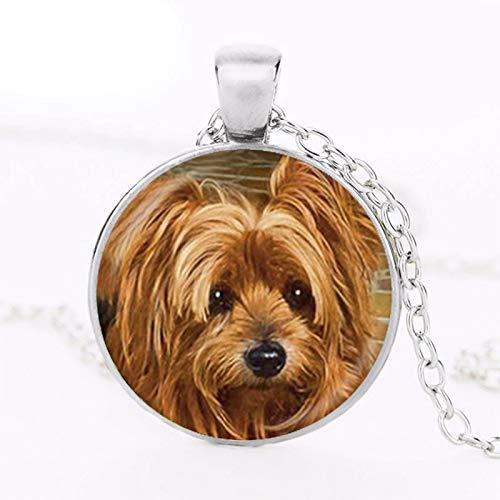 AliExpress - Gargantilla con colgante de foto de perro para hombre y mujer, regalo para amantes de...