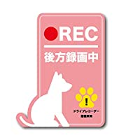 犬 後方録画中 シール ステッカー ピンク 桃 ドラレコ ドライブレコーダー イヌ ペット