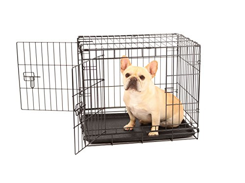 Carlson Secure and Compact Double Door Metal Dog Crate, Small with Divider Panel AmazonPets Basic Crates Dog from products Selection Selections Supplies Top